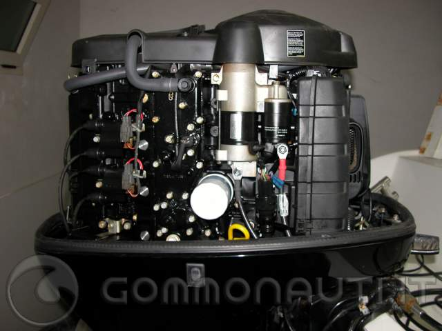 differenza tra yamaha 80 cv e 100 cv  pag  15