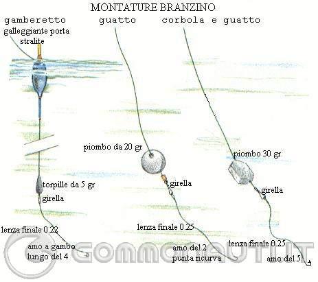 re: informazioni su come pescare il branzino in laguna veneta
