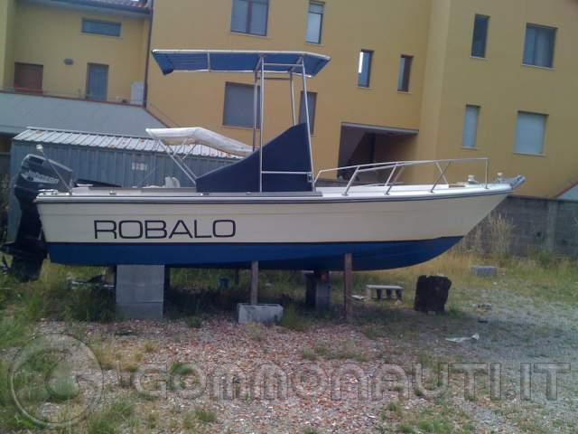 Robalo R200 - Johnson 175 Hp