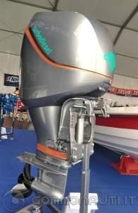 the latest f4407 19cc2 MOTORE FUORIBORDO DIESEL [PAG. 3]
