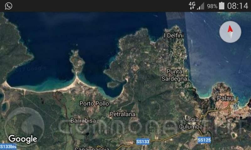 re: Raduno Gallurese