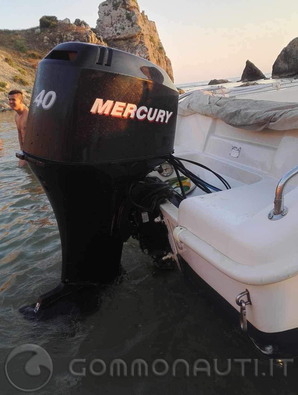 Mercury 40/60 del 2006 4t EFI