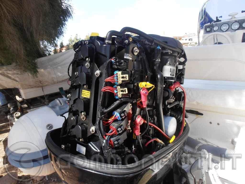 Vendo Gommone Nuova Jolly Black Fin Winner 585 motore Mercury 100 hp    Carrello Umbra Rimorchi