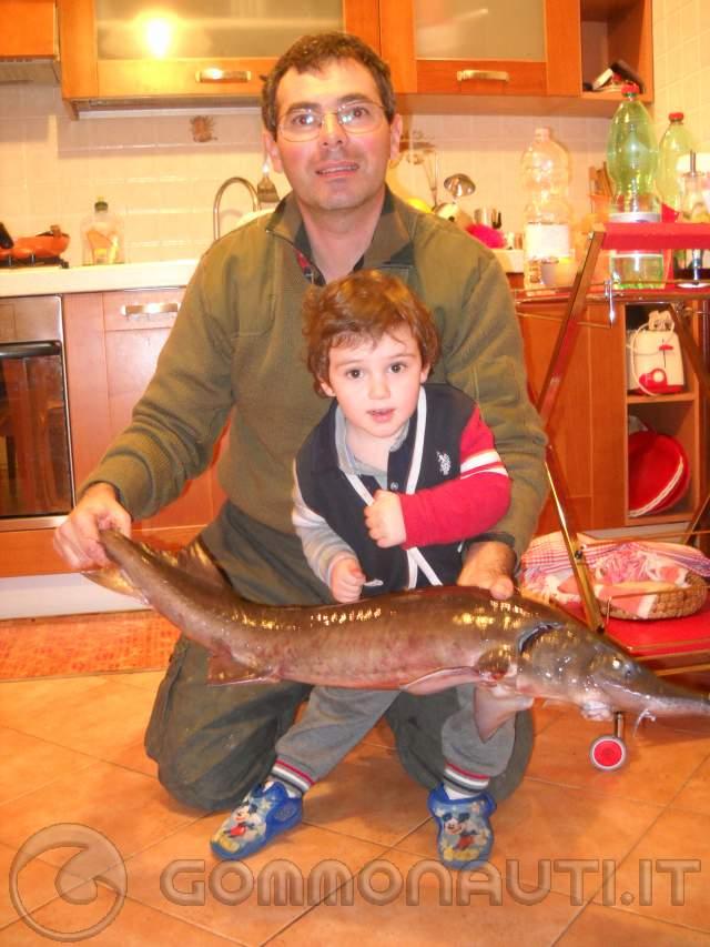 re: Pesca allo Storione nei laghetti sportivi, consigli ed esperienze di pesca!